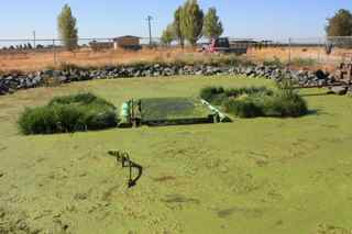 BioHaven FTW Streambed Treats Private Sewage Lagoon