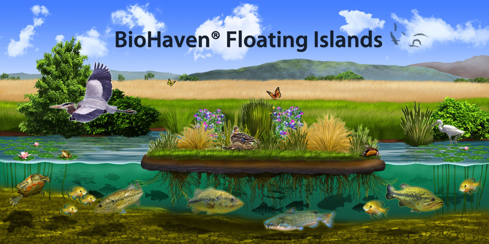 BioHaven copy with title smaller