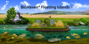 BioHaven copy with title