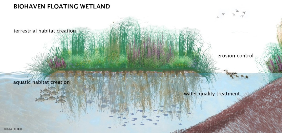 Benefits of Floating Wetland Islands
