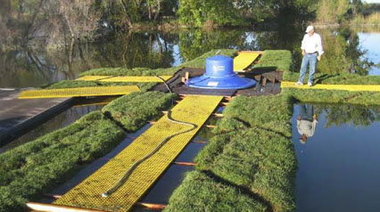 Wetlands to Mitigate Lake Eutrophication- Enhanced Circulation And Nutrient Uptake Expand
