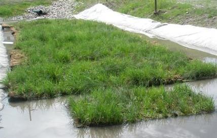 Industrial Stormwater Pond